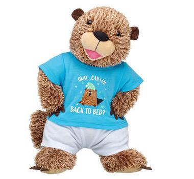 Groundhog Day build a bear set